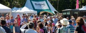 Maleny-crowd-23Apr15